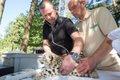 Schneeleoparden-‐Mädchen beim Tierartzt