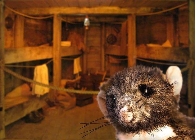 Rattenmädchen Jette