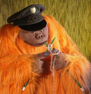 Ein Orang-Utan wie du und ich