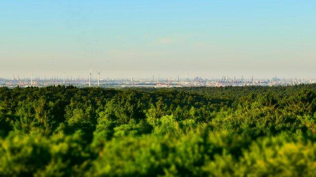 Panoramaaussicht Elbblickturm