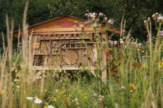 Naturerlebnispfad Insektenhotel