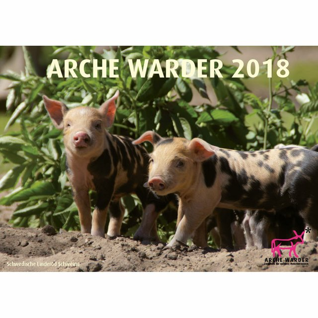 Arche Warder Tierkalender 2018