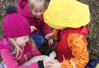 Kindergeburtstag-Haus-der-wilden-Weiden
