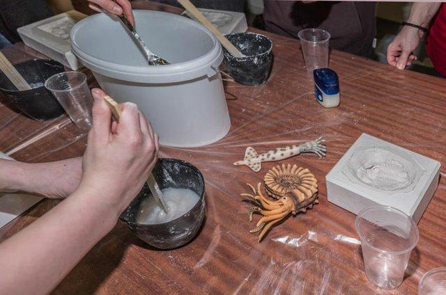 Fossilien - Komm, ich erzähl' Dir eine Erdgeschichte_