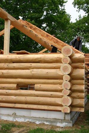 Kurs-Blockhausbau im Wildpark