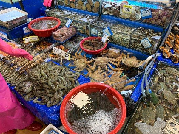 Fisch Markt